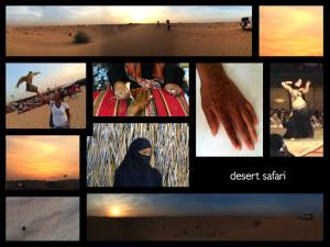 desert safari.052